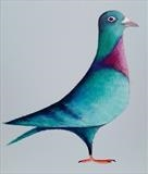 Blue Pigeon by Marc Heaton, Painting, paint,pencil,pen,ink on wood